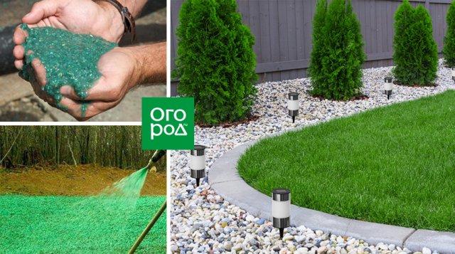 Жидкий газон для дома и дачи - плюсы и минусы
