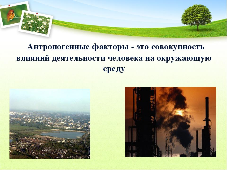 Антропогенные факторы окружающей среды – примеры, влияние, виды   презентация