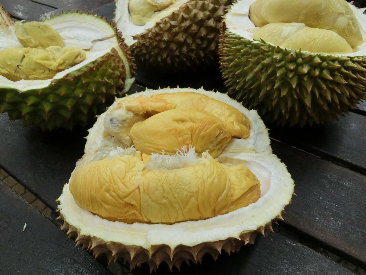 Дуриан - полезные свойства и противопоказания, состав, калорийность. как правильно есть дуриан, рецепты. выращивание в домашних условиях