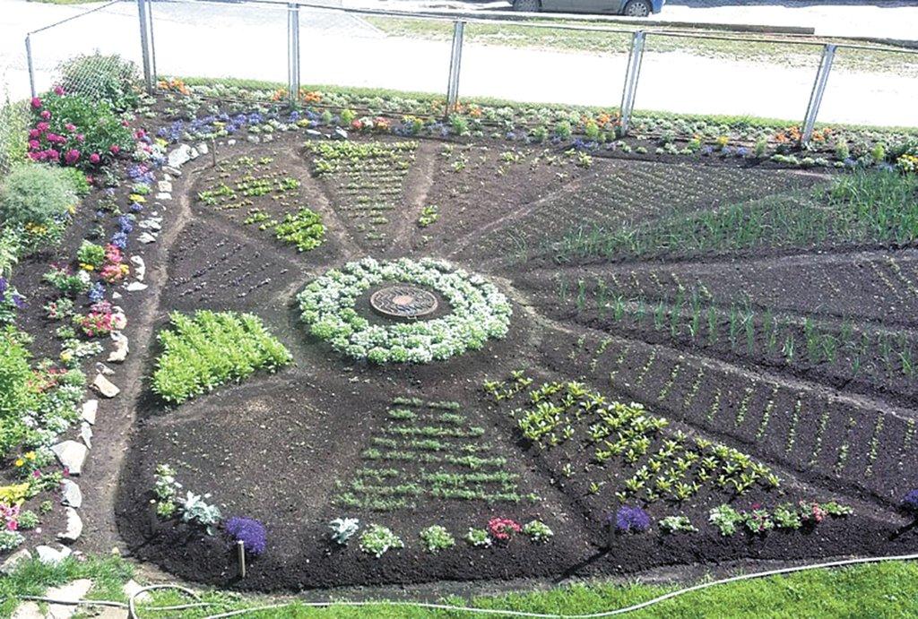 Беседа с детьми «что такое огород и что на нём растёт»