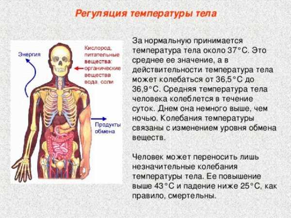 Субфебрильная температура тела (повышенная), что это такое, причины возникновения, что делать