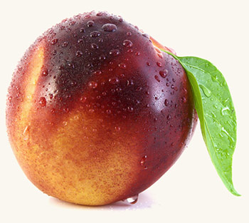 Нектарин - ? свойства, виды и сорта лысого персика