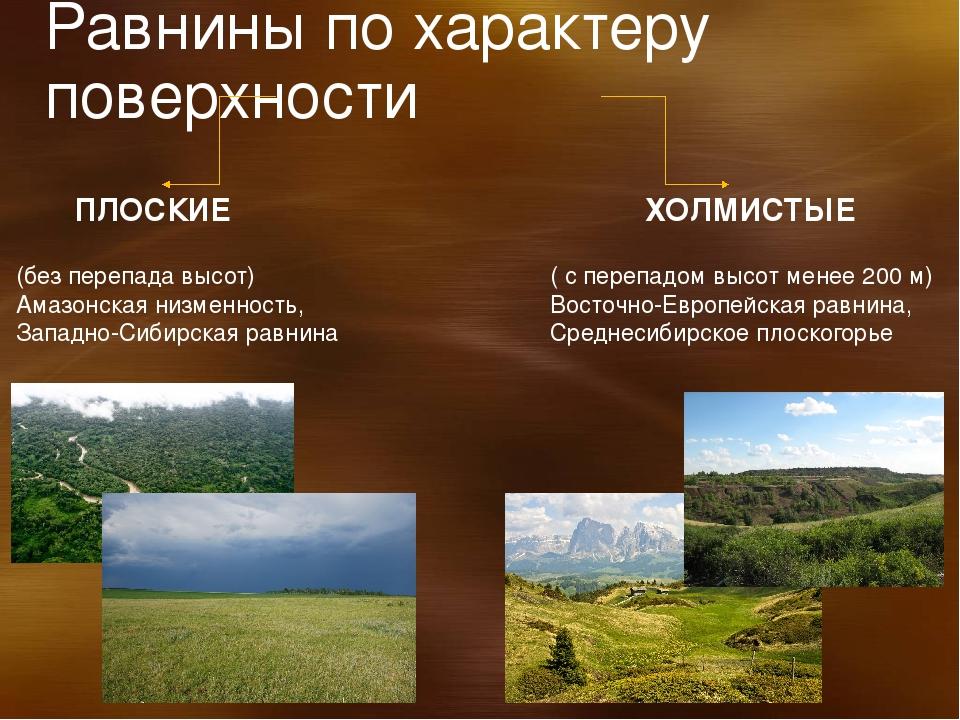 Самые большие равнины на территории россии: названия, карта, границы, климат и фото