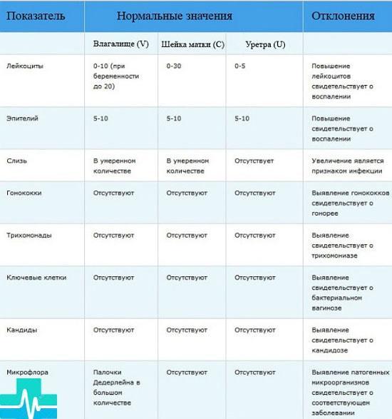 Расшифровка цитологии: интерпретация данных по результатам цитологического анализа | университетская клиника