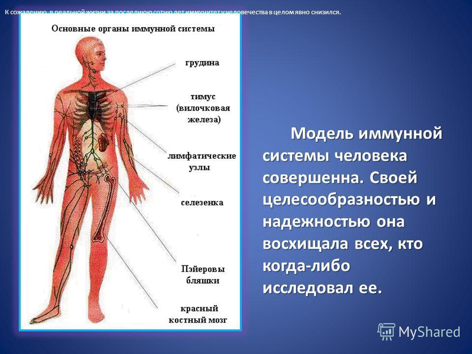 Виды иммунитета в таблице