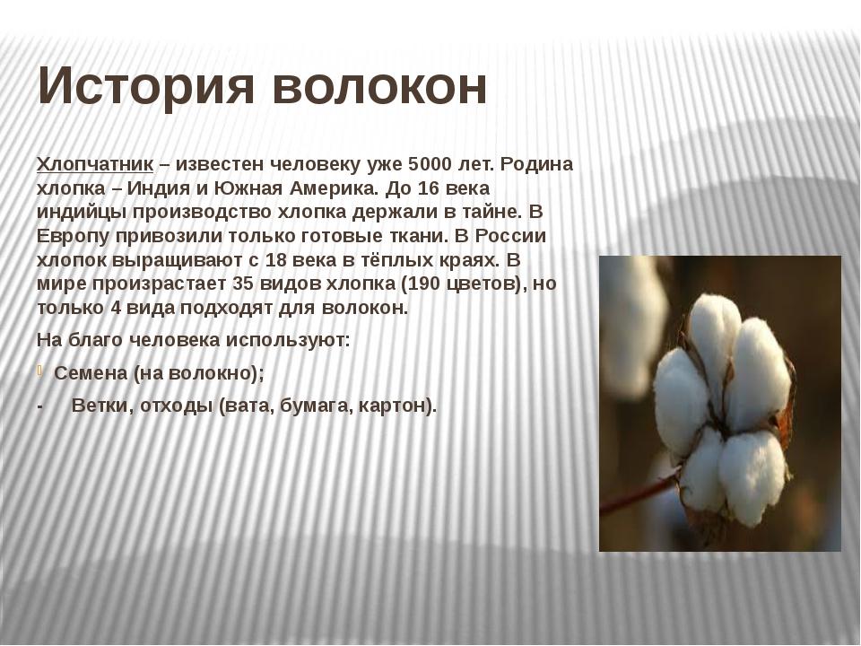 Особенности и свойства органического хлопка