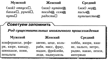 Что значит общий род существительного. что такое существительные общего рода? примеры