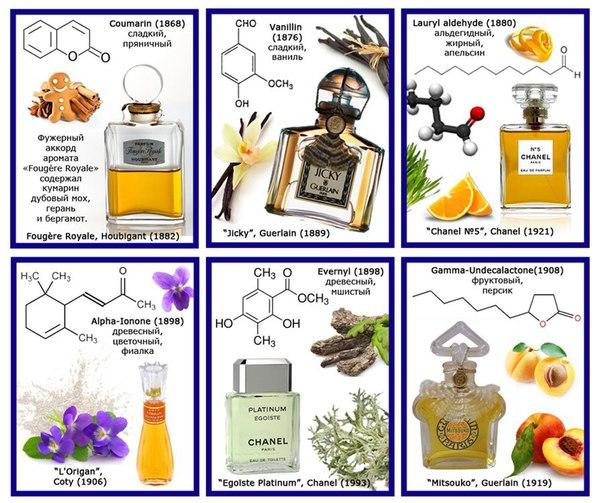 Из чего делают духи: химический состав туалетной воды, составляющие парфюма