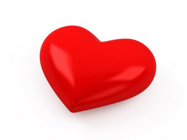 Строение сердца человека и его функции