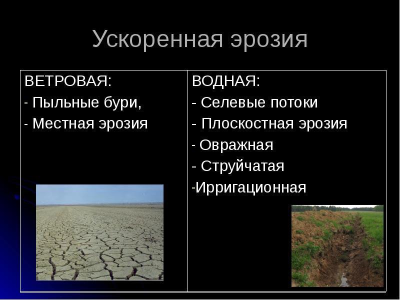 Что такое ветровая и водная эрозия почв?