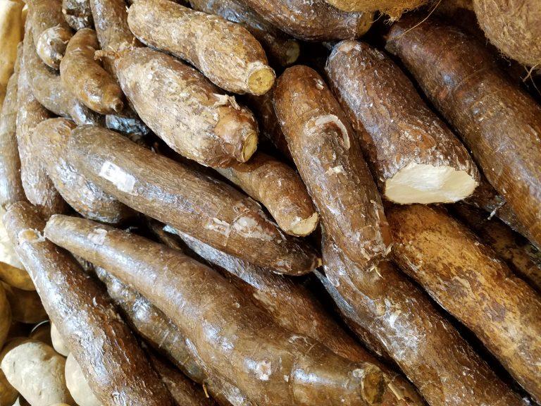 Маниок съедобный (кассава): что это такое, как едят и что приготовить