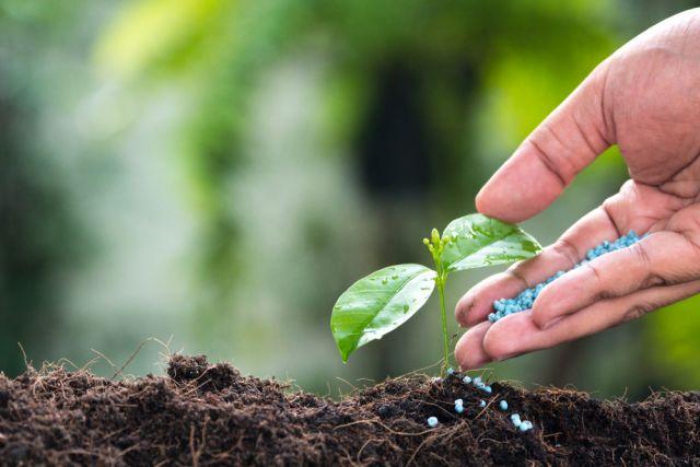 Подкормка минеральными удобрениями: внесение осенью / весной, нормы, список производителей,