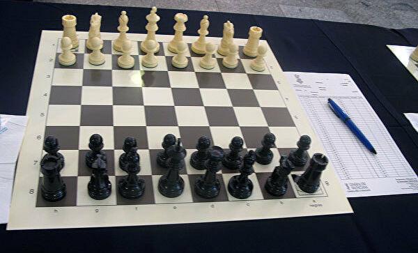 Проект:шахматы