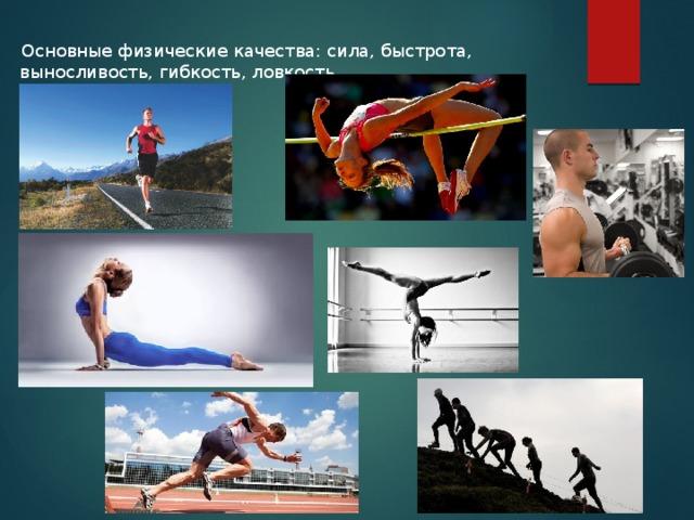 Физические качества - это... основные физические качества. физическое качество: сила, ловкость