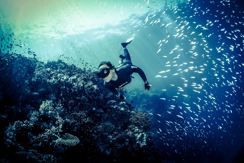 Фридайвинг - что это такое? подводное плавание с задержкой дыхания