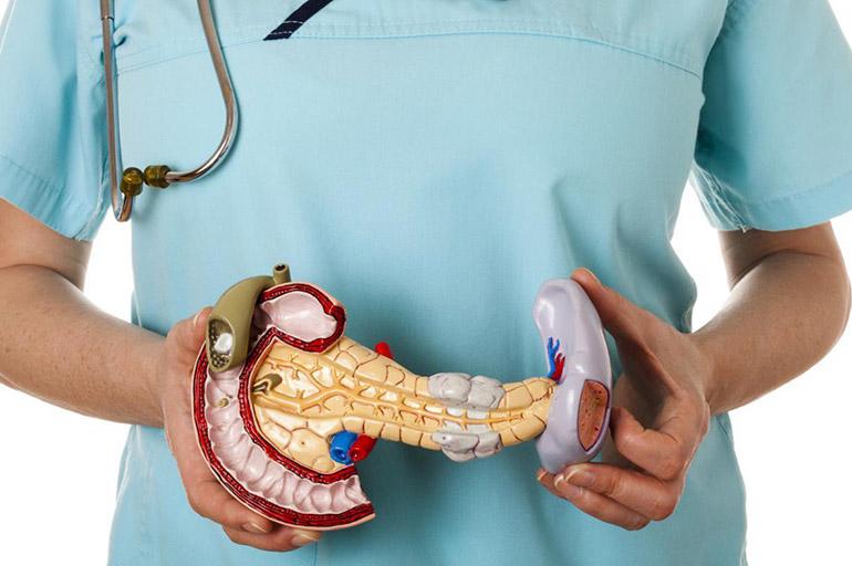 Липоматоз поджелудочной железы: что это такое, симптомы и лечение