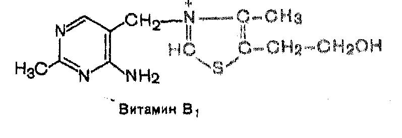 Витамин b1 (тиамин): в каких продуктах содержится, суточная норма, избыток и недостаток, польза и вред