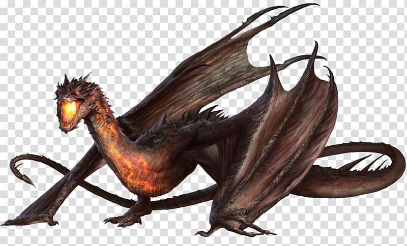 Голубой дракон: образ жизни, среда обитания, размножение и питание моллюска