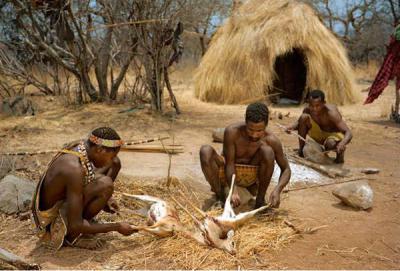 Племя — википедия