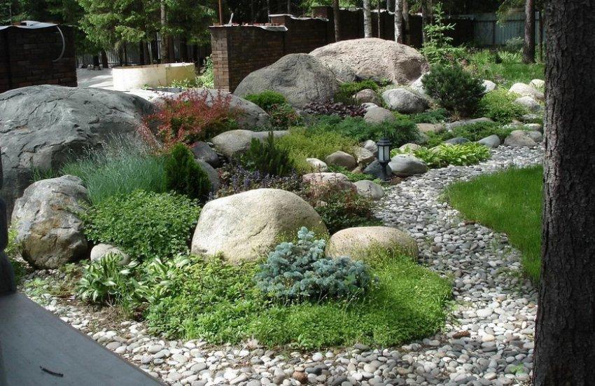 Рокарий в ландшафтном дизайне: что такое, сад из камней в саду, устройство, мини рокарий своими руками, пошаговые фото схемы ? все о посадке и выращивании