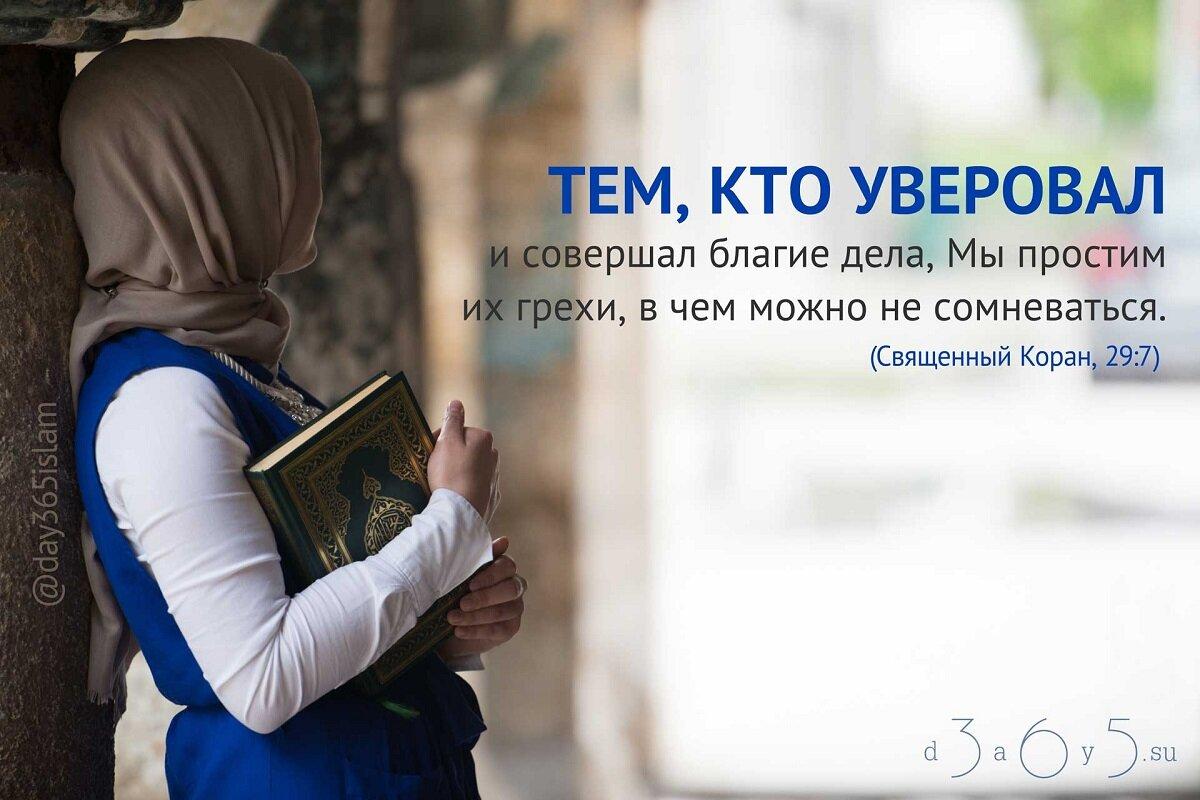 Самое важное о добровольной милостыне (садака, саадака) — блог — muslimclub.ru