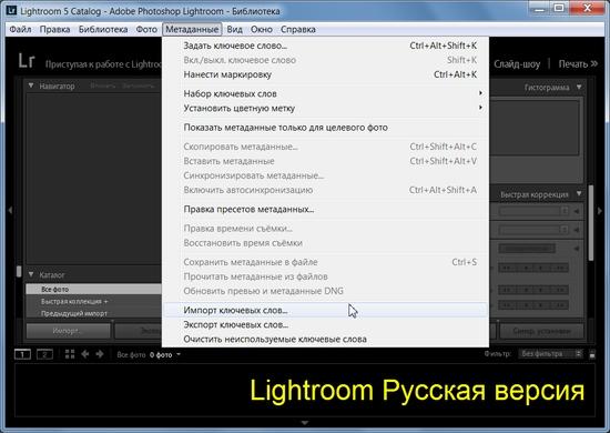 Программа для русификации программ. бесплатные русификаторы