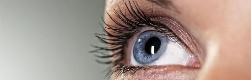Куриная слепота от чего возникает. куриная слепота   здоровье человека