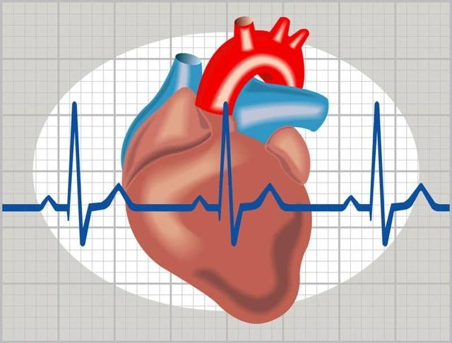 Периферическое сопротивление сосудов повышено. что такое опсс в кардиологии индексы периферического сопротивления повышен что значит - мед справочник