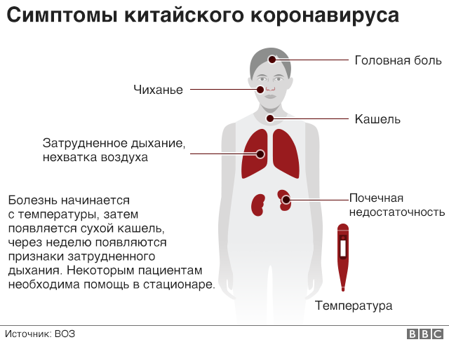 Коронавирусная инфекция собак