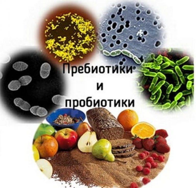 Что такое пребиотик в соке. что лечат пребиотики и пробиотики? | здоровье человека