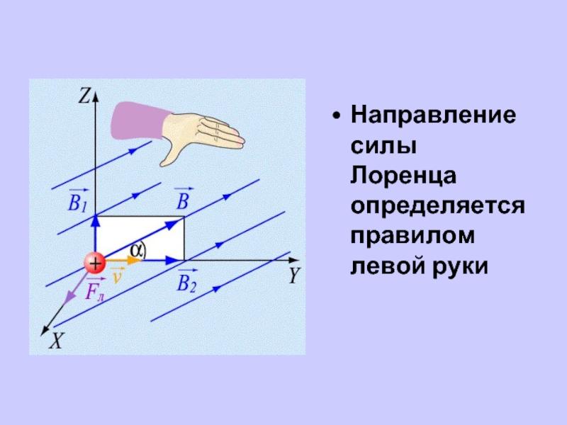 Сила лоренца просто і зрозуміло: визначення, формула, правило лівої руки