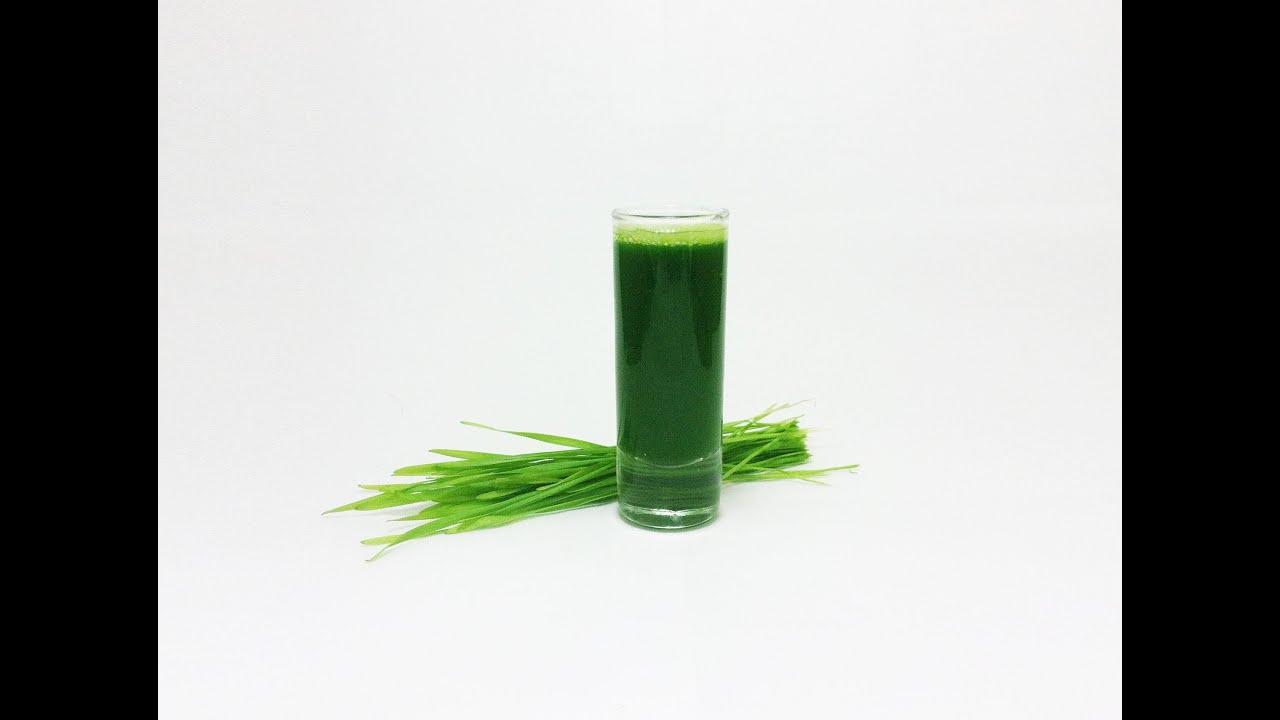 Витграсс сок ростков пшеницы wheatgrass - что это такое для пп