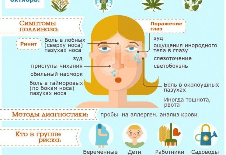 Поллиноз: общие сведения, симптомы, способы лечения