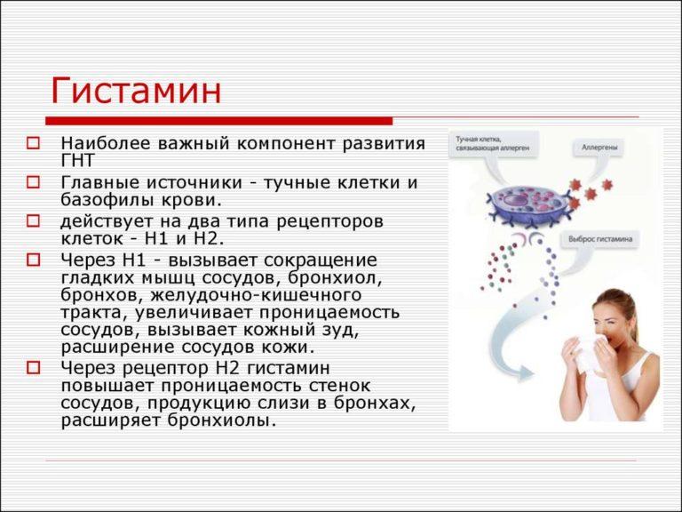 Гистамин что это такое • аллергия и аллергические реакции