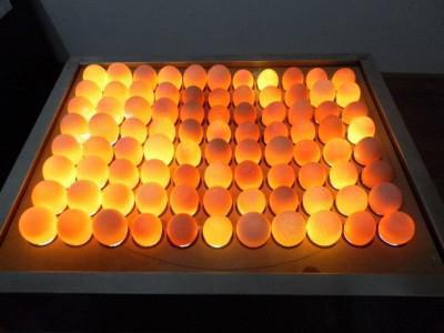 Овоскоп своими руками за 5 минут, что такое овоскоп, как проверять яйца