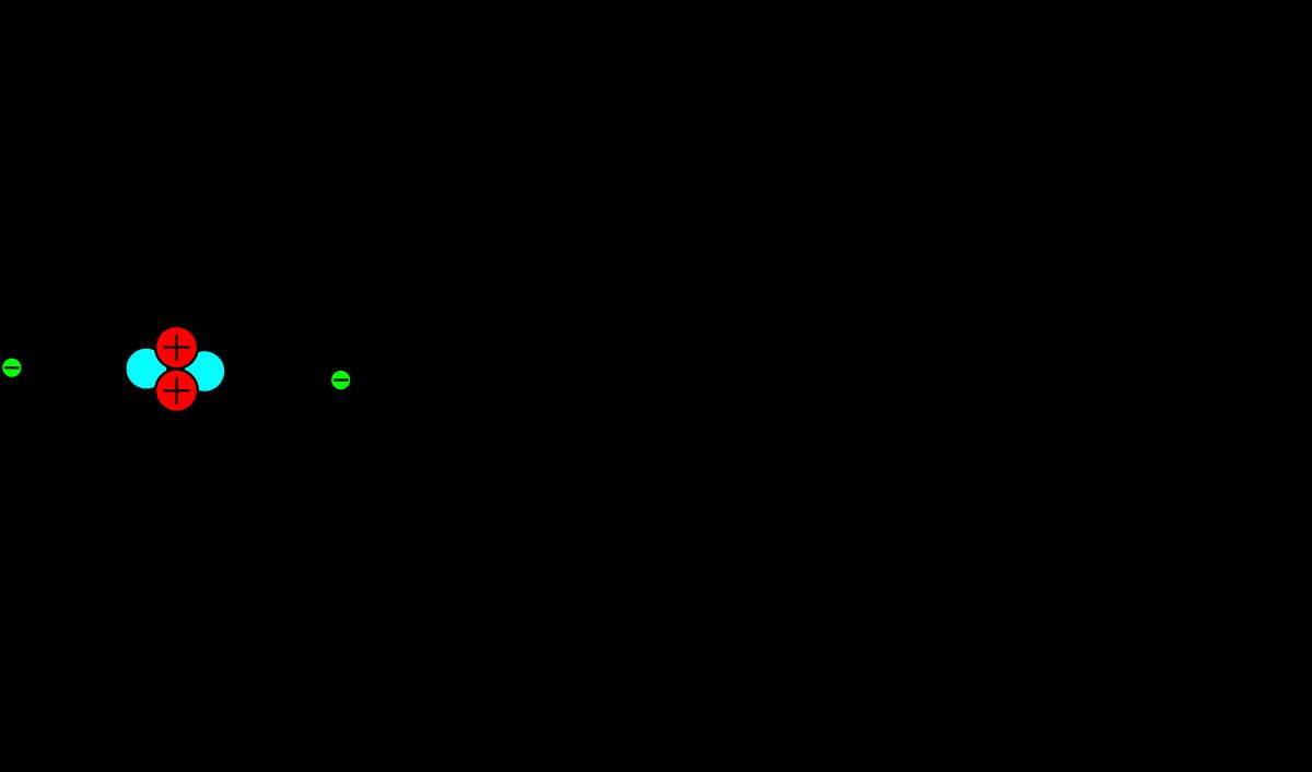 Ядро строение функция