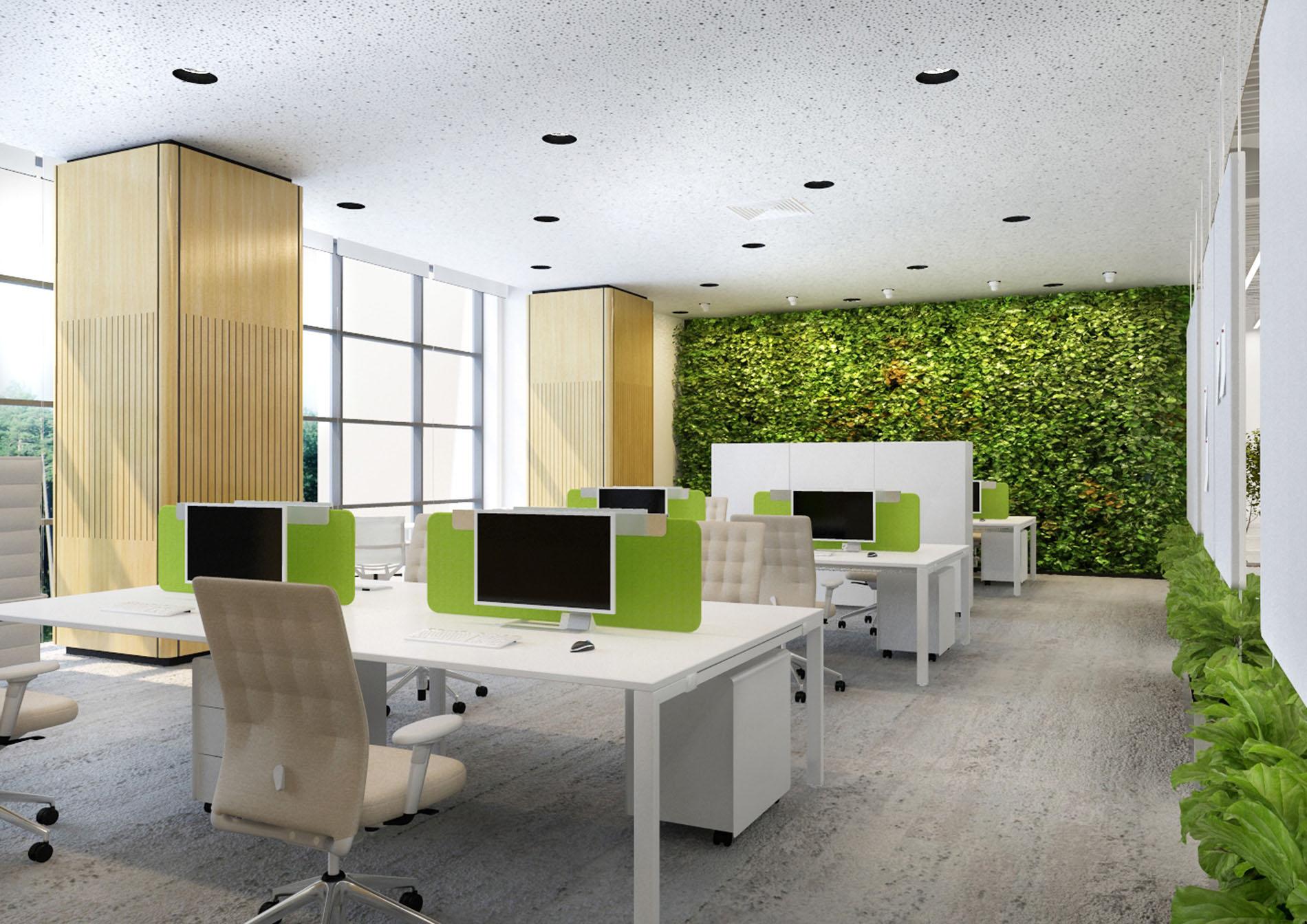 Open space: как правильно организовать офисное пространство