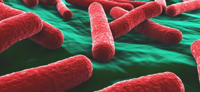 ✅ туберкулема легких - что это такое и чем она опасна? - vrach-med.ru