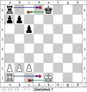 Объясняем ребенку, что такое король и рокировка в шахматах (часть 9)   isoveti.ru