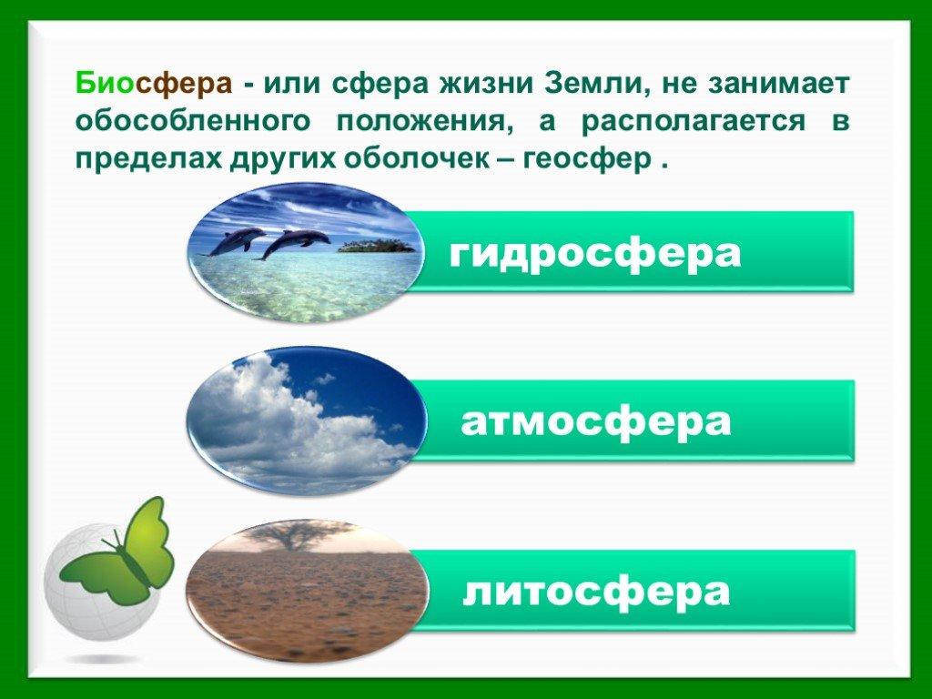 Что такое биосфера и чем она отличается от других оболочек?