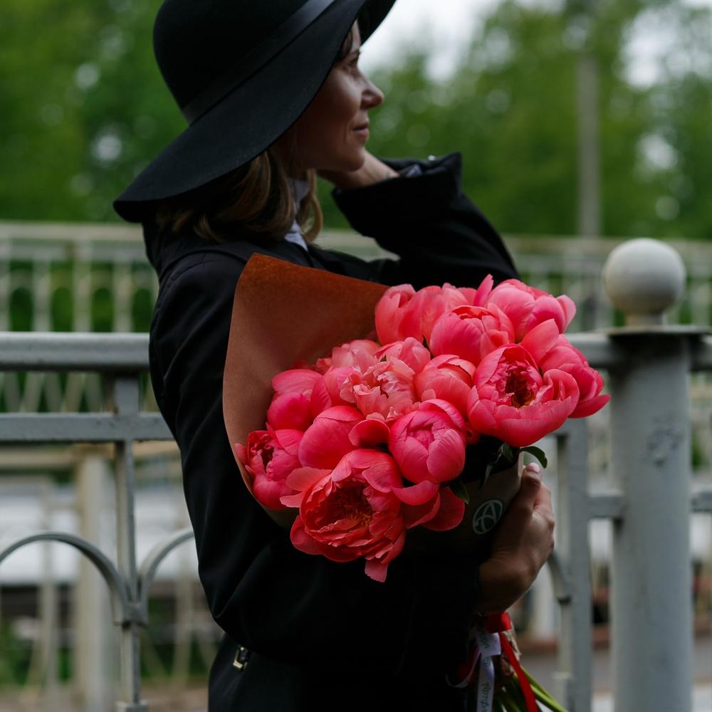 Все, что вам нужно знать о пионах, – в одной статье | в цветнике (огород.ru)