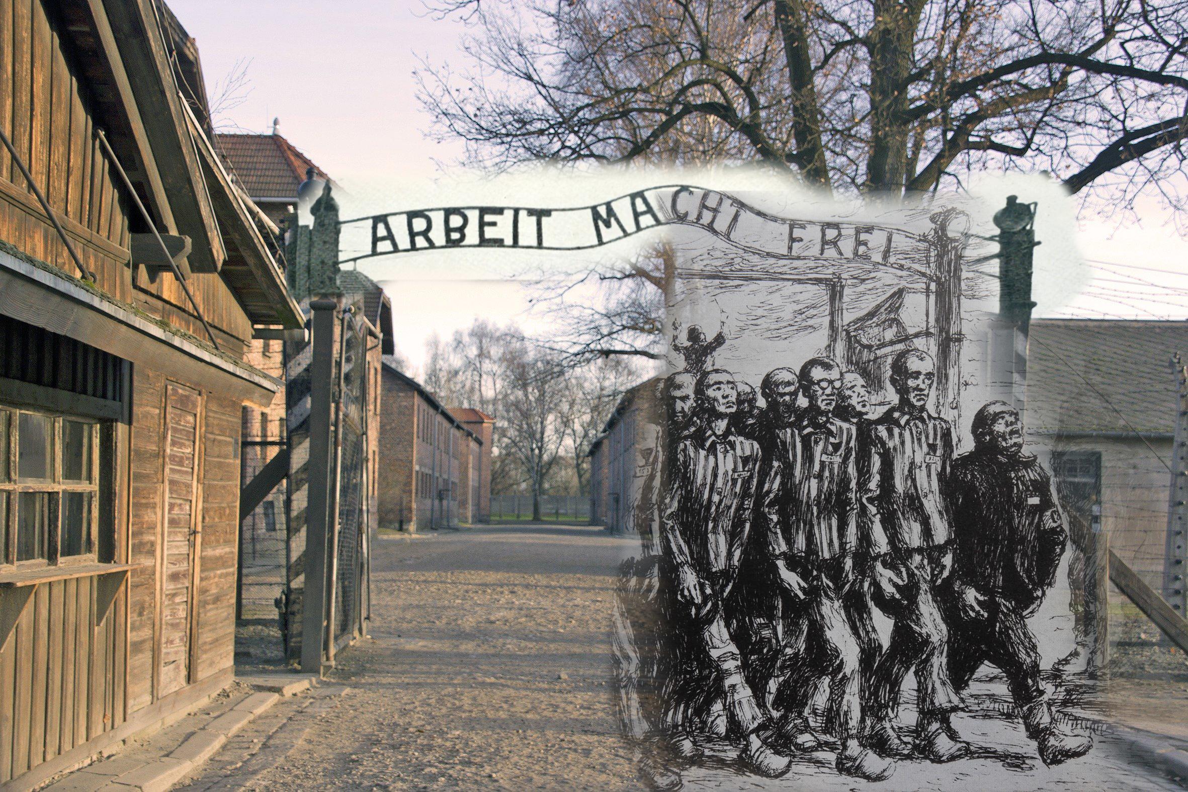 Освенцим – место, где под запретом слово «жизнь» — история россии