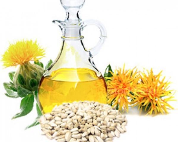 Сафлоровое масло – польза и вред очень ценного продукта