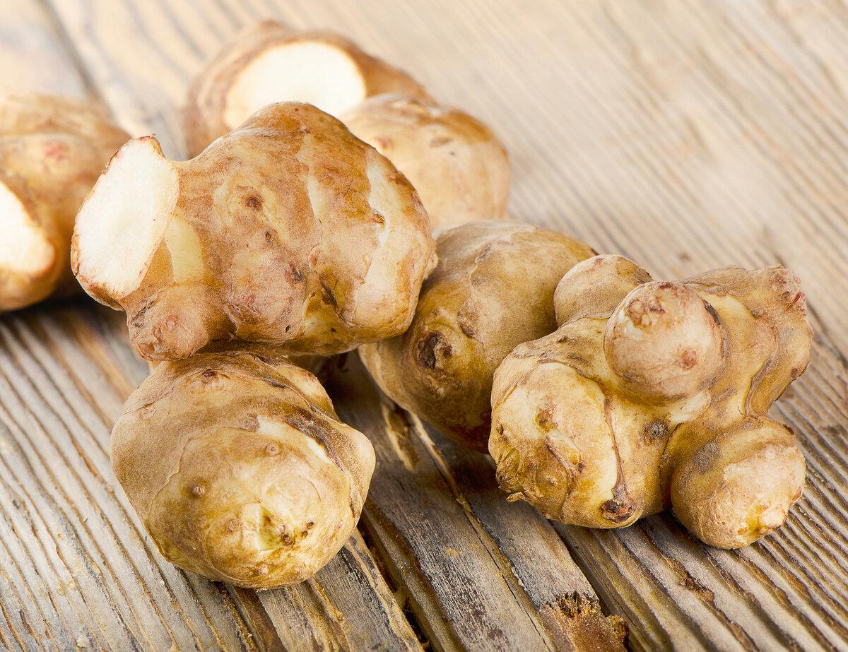 Топинамбур - польза и вред, приготовление с рецептами. полезные свойства и противопоказания топинамбура