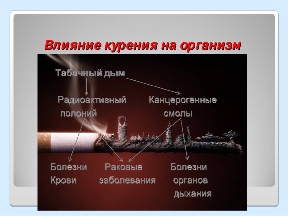 Самые лучшие сигариллы с натуральным табаком, которые курятся как обычные сигареты | ryos.ru | табак и сигареты ???? | яндекс дзен