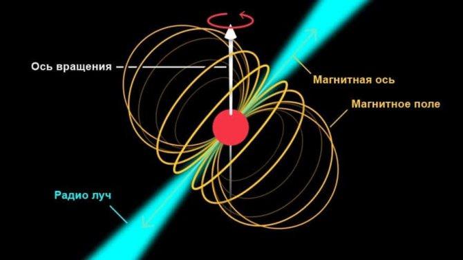 Виды и особенности пульсаров