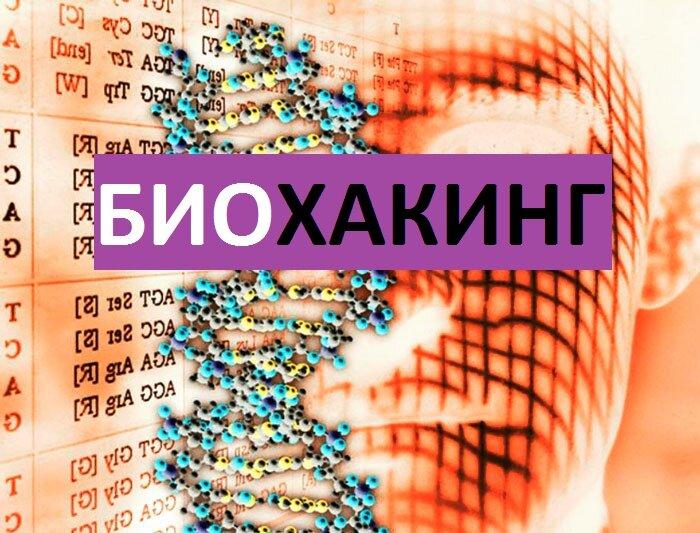 Биохакинг: основные принципы, методы, руководство | пп и зож