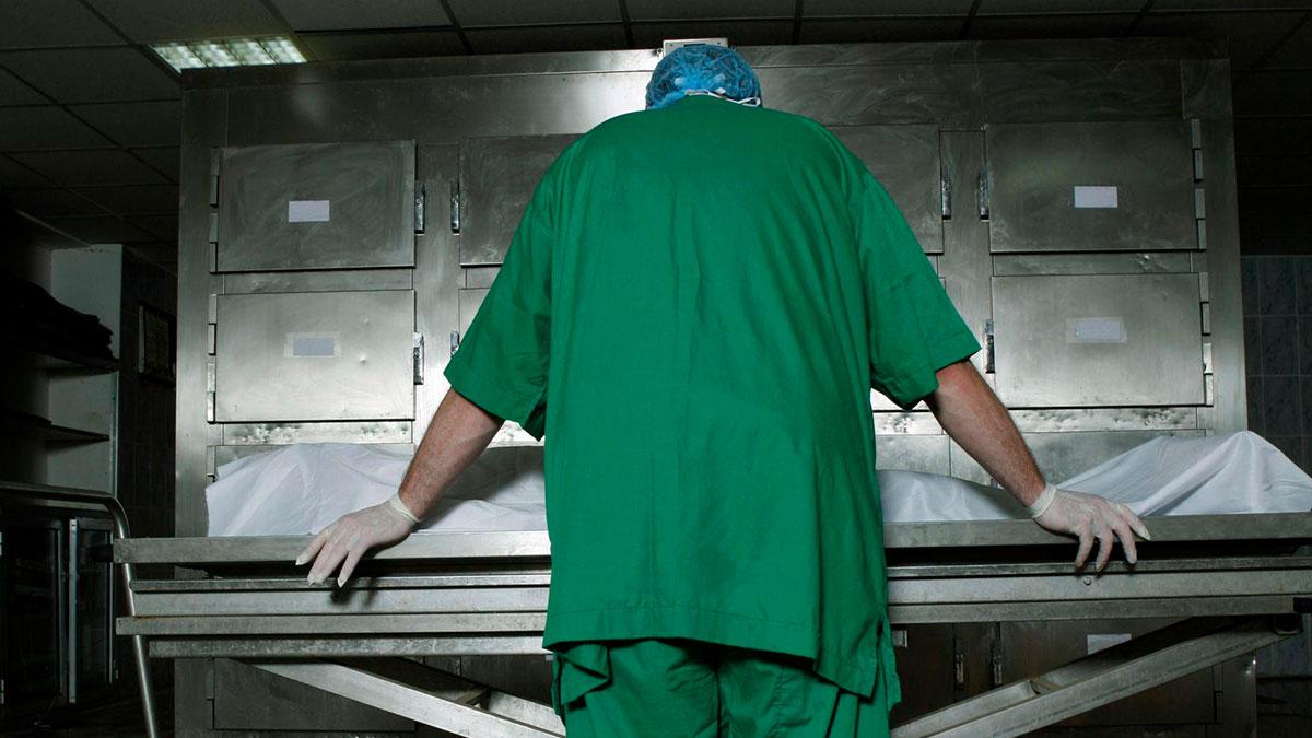 """В лёгких больных коронавирусной инфекцией обнаружен симптом """"матовое стекло"""" - информационный портал командир"""