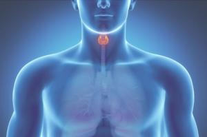 Сцинтиграфия щитовидной железы: что такое, подготовка к обследованию, вредна ли, как делают с пертехнетатом, что показывает