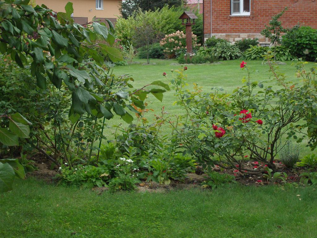 Розарий своими руками - с чего начать? советы и стили | сайт о саде, даче и комнатных растениях.